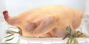 Thaw the Turkey